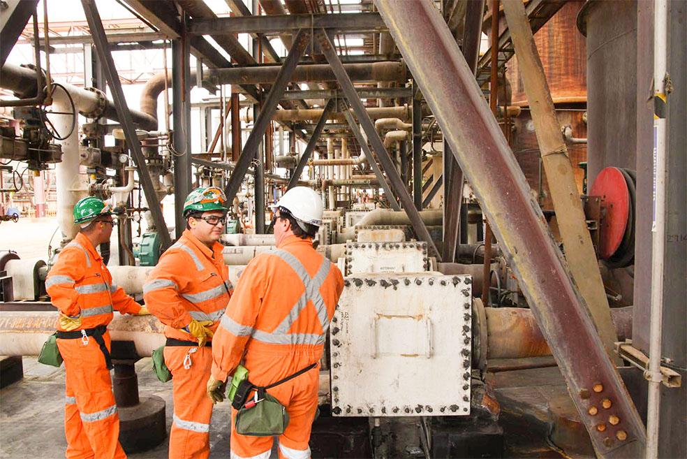 DSA onsite composite inspection - Project Management